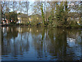 SU9169 : Blackmoor Pond by Alan Hunt