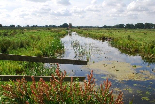 Main drain, Buckenham Marshes