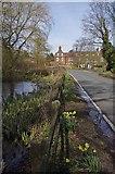 TL6400 : Roadside Pond Fryerning by Glyn Baker