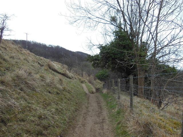 Near Prestbury Hill Reserve