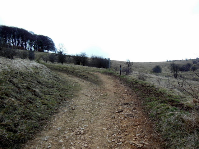 The track above Badgers Mount Farm