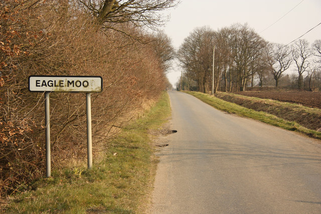 Eagle Moor