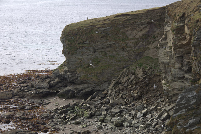 Old cliff fall, Ness of Littlegarth