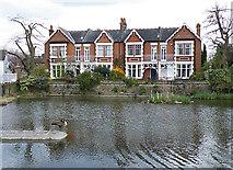 TQ1977 : Kew Pond by Anne Burgess