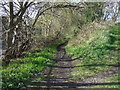 NZ0862 : Footpath off the A695 by JThomas