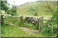 SK2059 : Bridleways in Gratton Dale by Graham Horn