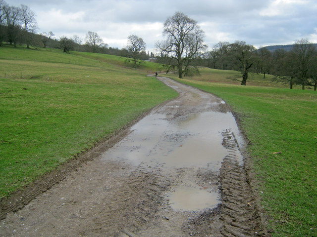 Track through Chatsworth Park