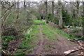 SP7136 : Drive through Foxcote Wood by Philip Jeffrey
