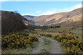 NN0672 : Gleann Sròn a'Chreagain track by Andy Waddington