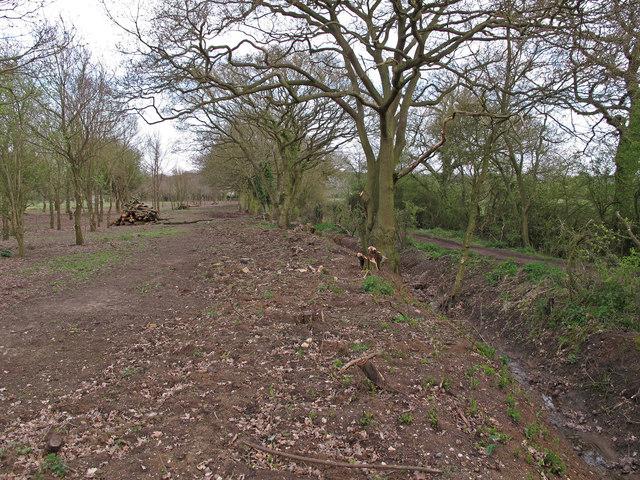 Boundary of Tiptree Parish Field and Park Lane
