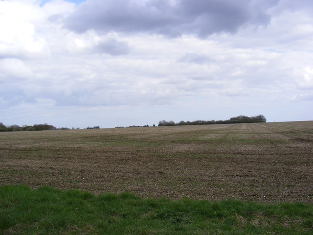 Fields off the entrance to South Manor Farm