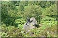 SK2773 : Climbing at Birchen Edge by Graham Horn