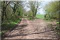 SO4216 : Track near Grange Farm by Philip Halling