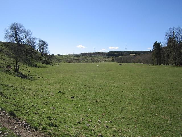 Grassland, Lilburn Burn