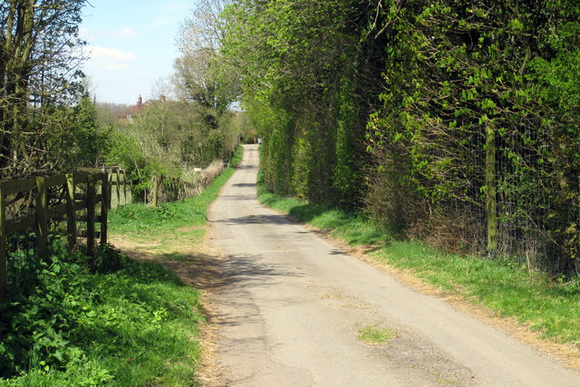 The Spinney by the road to Manor Cottages