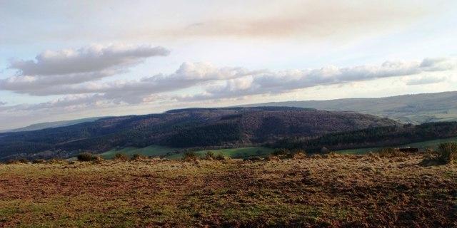 Moorland scenery above Selworthy (2)