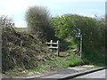 NZ2452 : Footpath off Pelton Lane by JThomas