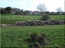 NZ1366 : Hadrian's Wall, Heddon-on-the Wall by JThomas