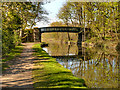 SD5907 : Leeds and Liverpool Canal Bridge #60, Haigh Park Bridge by David Dixon