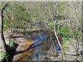 SD5807 : River Douglas, Haigh Country Park by David Dixon