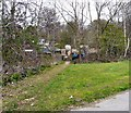 SJ9594 : Swain's Valley Allotments by Gerald England