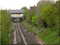 TQ4375 : Platforms of the former Eltham Park station by Stephen Craven