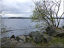 H1658 : Lough Erne, Rossmore Point by Kenneth  Allen
