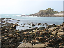SV8614 : The south end of Gweal, seen from Bryher by David Purchase