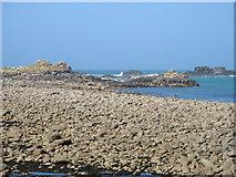 SV9117 : Plumb Island, Pernagie Isle and Lion Rock by David Purchase