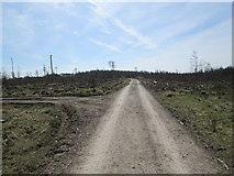 SE7794 : Wrelton Moor by T  Eyre