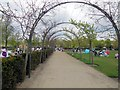 TQ2549 : Overhanging branches, Priory Park by Paul Gillett