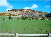 J0125 : Improved grassland on the lower slopes of Sturgan Mountain by Eric Jones