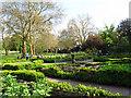 TQ3877 : Greenwich Park herb garden by Stephen Craven