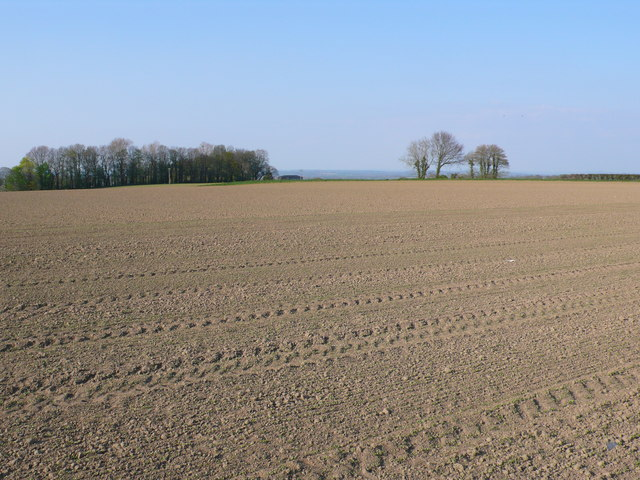 Freshly Tilled Field