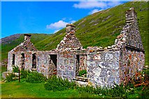 NN1364 : West Highland Way by danny kearney