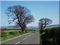 NU0328 : Looking along the B6348 towards Chatton by Graham Robson