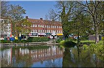 TQ4666 : Priory Pond by Ian Capper