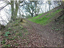 ST7693 : The Cotswold Way towards Blackquarries Hill by Ian S