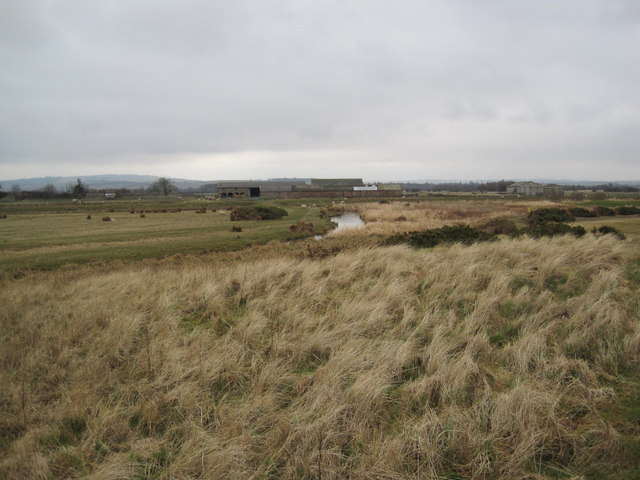 North Low and Goswick Farm