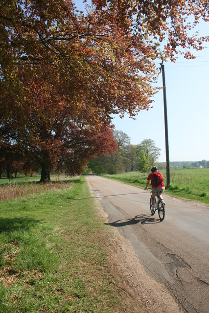 Cycling in Clumber Park