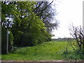 TM2473 : Footpath off the B1117 Laxfield Road by Adrian Cable