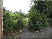 SK3487 : Albion Street Garden, Crookesmoor, Sheffield - 1 by Terry Robinson