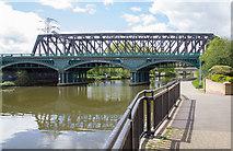 TL1998 : The Nene Viaduct by David P Howard
