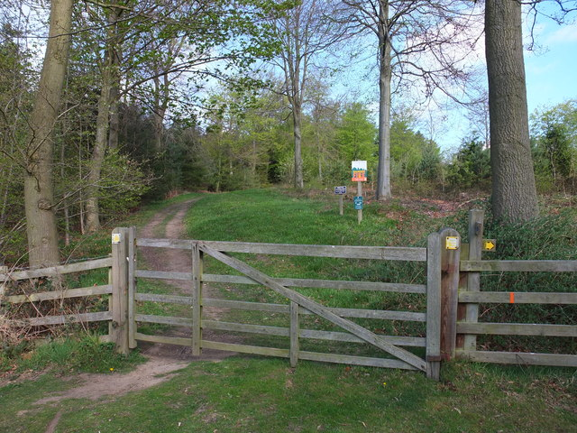 A gated entrance into South Wood