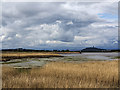 NS8692 : View over Tullibody Inch by William Starkey