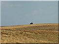 NY6470 : Tank invades Barnsley! by Karl and Ali