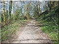 ST7582 : The Cotswold Way in Little Sudbury Farm by Ian S