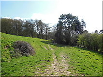 ST7581 : The Cotswold Way enters Old Sodbury by Ian S
