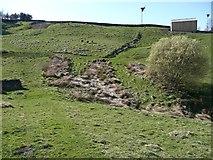 SE0120 : Ripponden Footpath 10 crossing Blackshaw Clough by Humphrey Bolton