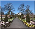 NS5563 : Topiary in the Walled Garden by Barbara Carr